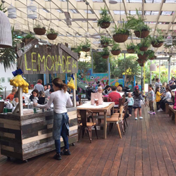 Cafes next to play areas in the Hills: 2016 edition