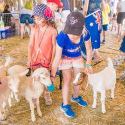 Things to do this January: The Hills Sydney