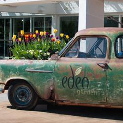 HDM visits Eden Gardens, North Ryde