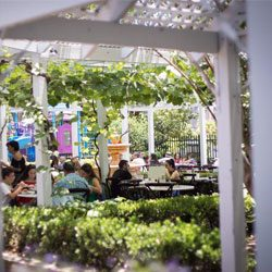 Cafes with play areas: The Hills, Sydney