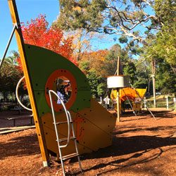 One of our favourite places: Wahroonga Park