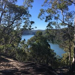 Berowra Waters | Calabash Point bushwalk
