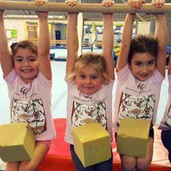 Sydney Hills Gymnastics