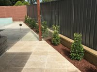 Pool surrounds and privacy screening