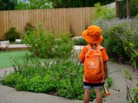 Endeavour Early Education Dural