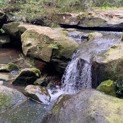 Waterfall Walk | West Pennant Hills | Richard Webb Reserve Playground