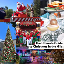 The Ultimate Guide to Christmas 2020 in the Hills