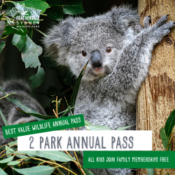 Hands-on fun for the whole family at two wildlife parks!